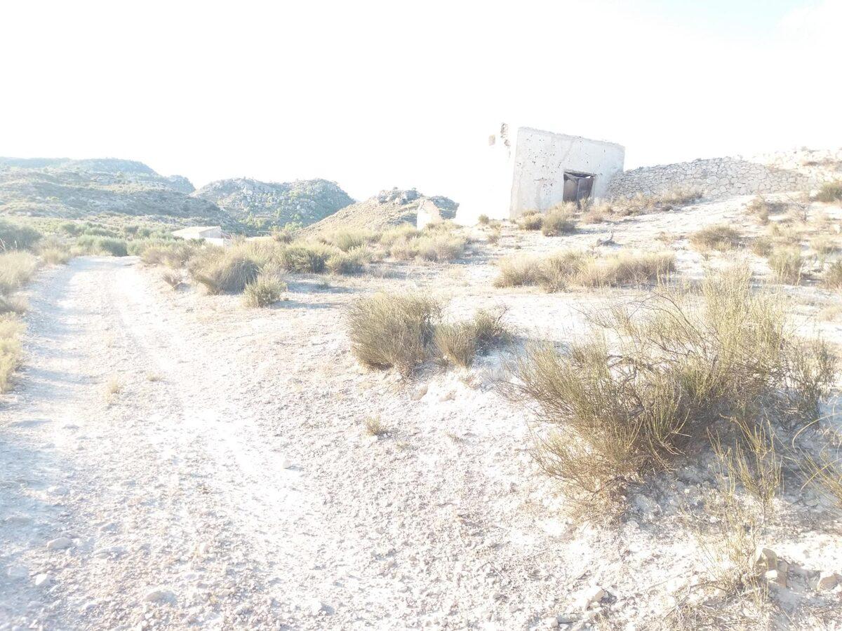 Foto panorámica de Ceutí