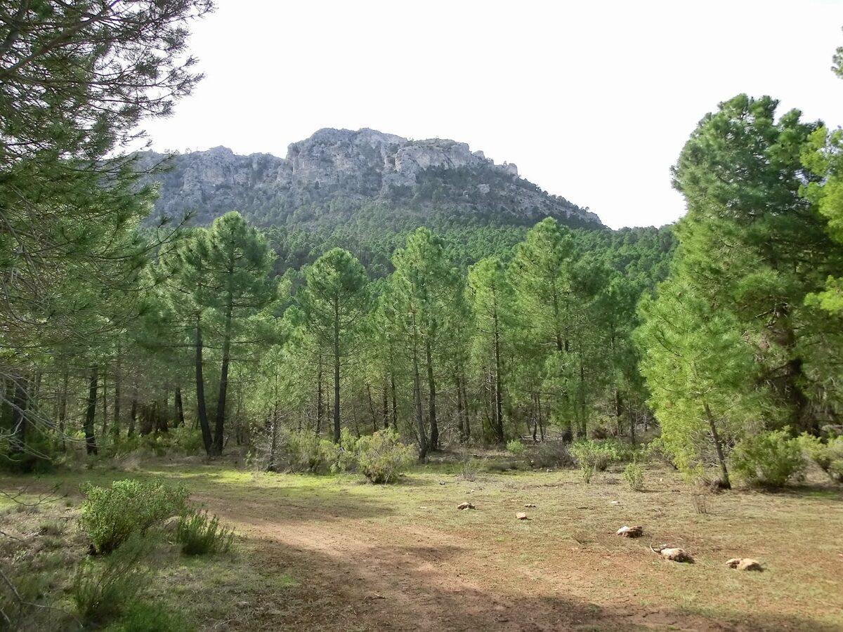 Foto panorámica de Moratalla
